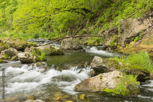 Foto auf Gartenposter Forest river Whitewater River In Spring