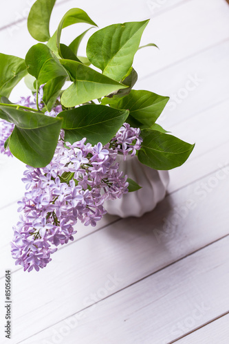 Wall Murals Lily of the valley Spring Lilac