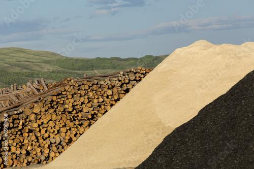 Fotografia, Obraz  Logs and Wood Chips