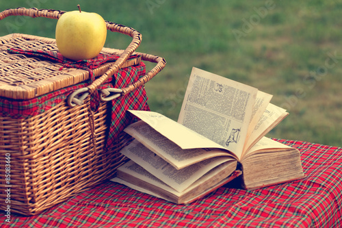 Keuken foto achterwand Picknick Picnic basket and book on the grass