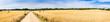 Leinwandbild Motiv Straw field panorama