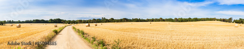 Straw field panorama Wallpaper Mural
