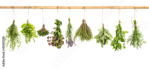 Hanging fresh herbs basil, sage, thyme, dill, mint, lavender