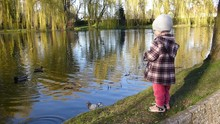 Young Girl Feeding Ducks And Pigeons On Pond