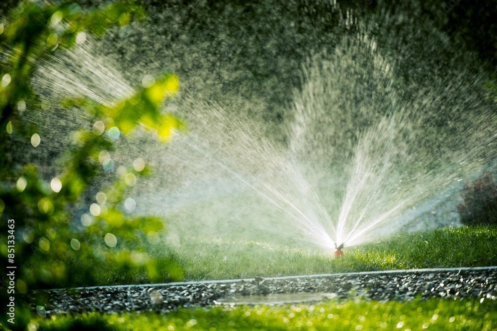 Fototapety, obrazy: Rotating Lawn Sprinkler