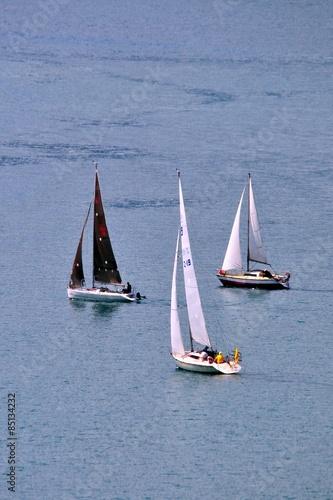Fotografiet  sailing