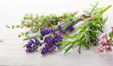 Fototapeta Lavender - Fresh Herbs on a wooden table.
