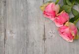 Trzy żółto różowe róże