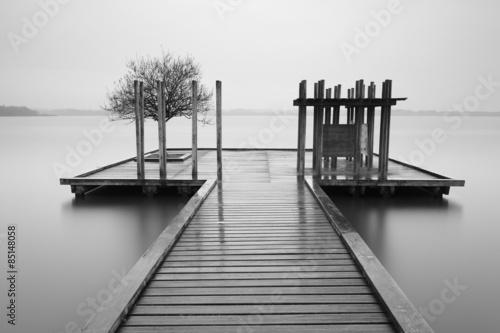 Fototapety, obrazy: Embarcadero con árbol