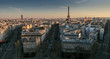 Paris skyline at sunset, France
