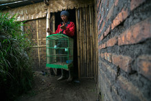 Tenggerese Man Holding A Bird Cage, Cemoro Lawang, East Java, Indonesia
