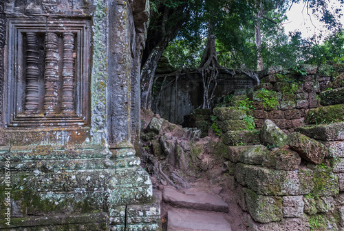Recess Fitting Garden blind window with bas-reliefs in the shape of columns and to the fund, ficus on laterite wall in the archaeological ta prohm place in siam reap, cambodia