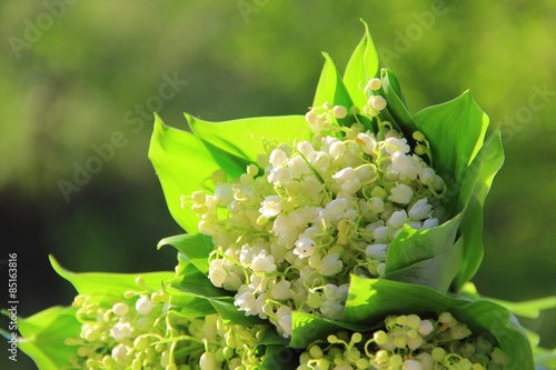 Wall Murals Bouquets of lilies of the valley on a green background