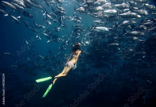 Slika na platnu Freediver and fish