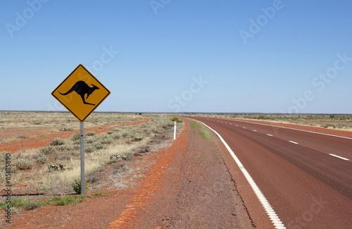 In de dag Australië Känguru Schild