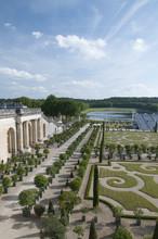 L'orangerie, Château De Versailles