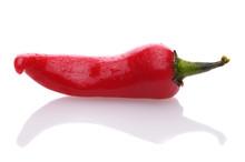 Pepper On White