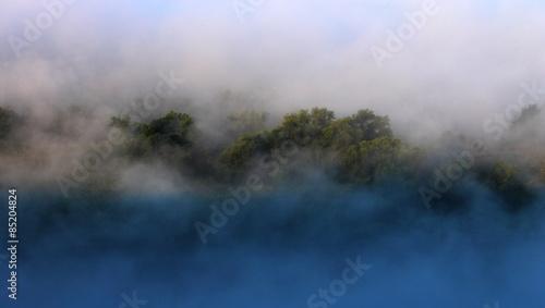 Poster Rivière de la forêt Туман в лесу