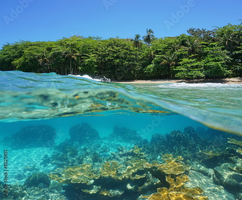 Spoed Foto op Canvas Eiland Half above and underwater of a tropical shore