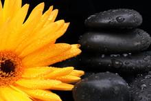Flower And Massage Stones