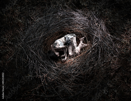Photo girl in the nest, corpse of the girl in the woods