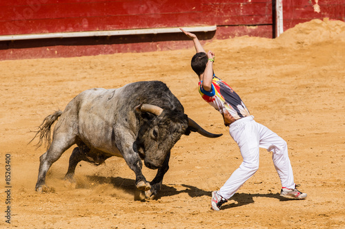 Photo Stands Bullfighting Competición de recortes con toros bravos