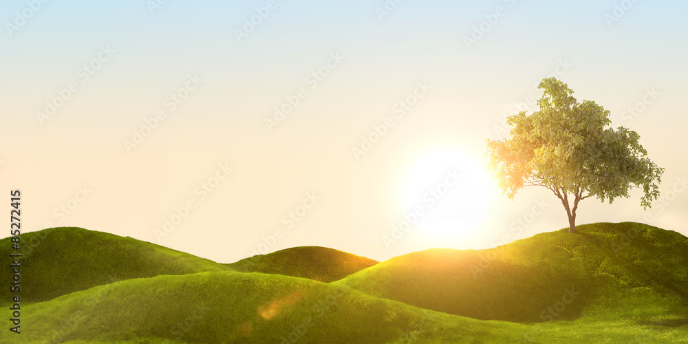 Fototapety, obrazy: 3d rendering of a green field