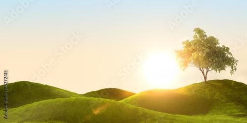 Obraz na płótnie 3d rendering of a green field