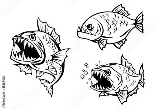 Fotografia, Obraz  Angry piranha fishes with sharp teeth