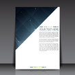 Business Flyer Template   EPS10 Vector Design