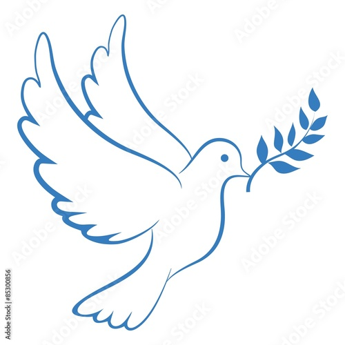 Foto  Peace Dove Blue