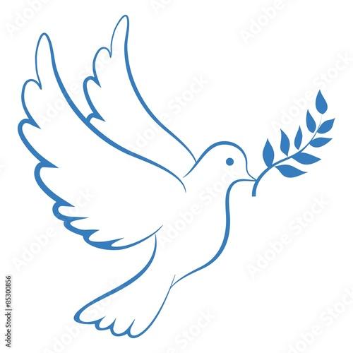 Foto  Peace Dove Blue