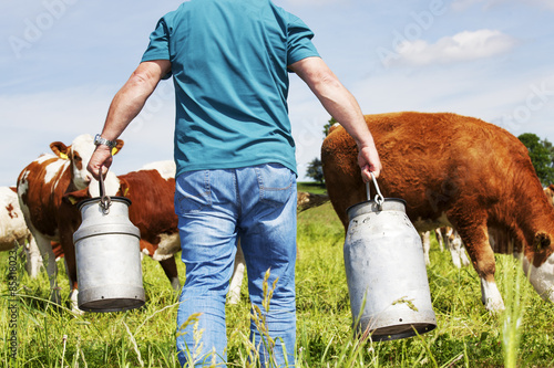 Fotografie, Obraz  farmer with milk churns at his cows
