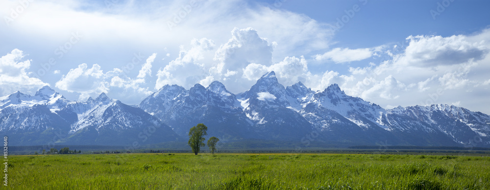 Fototapety, obrazy: Panorama of Grand Teton mountain range in Wyoming