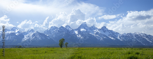 Panorama of Grand Teton mountain range in Wyoming #85324640