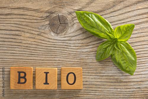 Fotografiet  Bio basilico