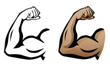 Muscular Arm Flexing Bicep Isolated Vector Illustration