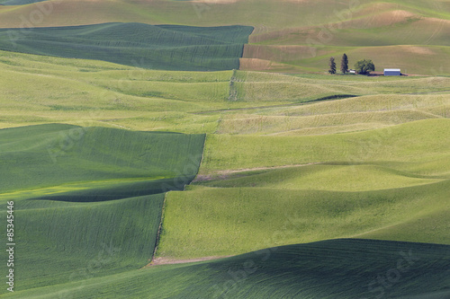 USA, Idaho, Palouse, view to rolling landscape with wheat fields from Steptoe Butte #85345446