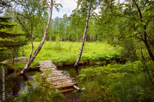Forest rural landscape with a calm stream and wooden bridge