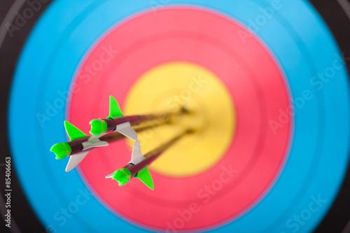 Vászonkép Archery