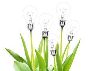 Obraz na Szkle Lamps