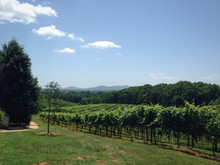 Georgia Wine Country With Appalachians In Background