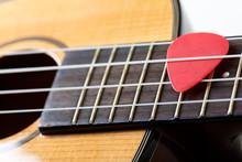 Small Hawaiian Four Stringed Ukulele Guitar