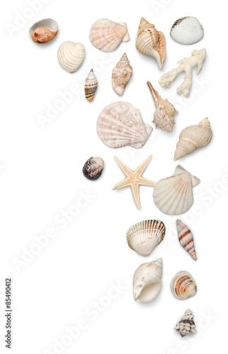 Fotografía  Shell, Beach, Sand.