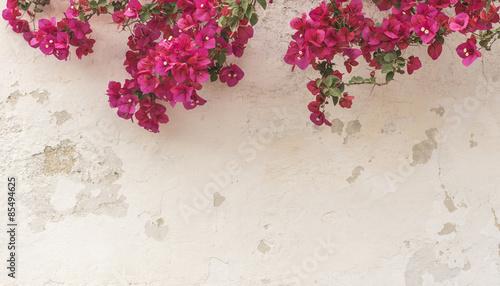 Tela Mauer im Shabby style mit Bougainvillea pink