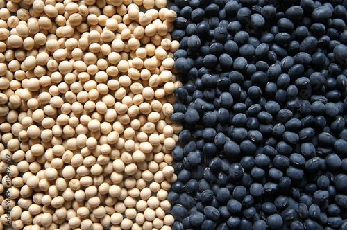 Fotografie, Obraz  Blacksoybeans and Whitesoybeans 左右