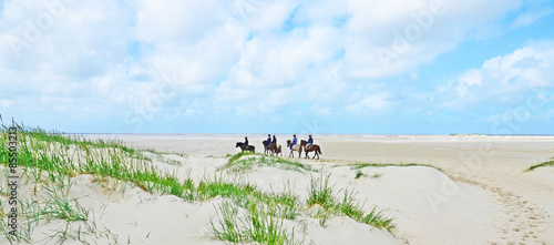 Photo sur Aluminium Equitation Ausritt am Strand