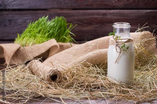 Montage in der Fensternische Milch / Milchshake Delicious milkshake in exclusive glass jar.