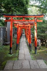 Panel Szklany Japoński Torii Gates At Nezu Shrine, Tokyo, Japan
