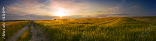 Foto auf Gartenposter Landschappen Panoramic view of the sunset on the field of grain